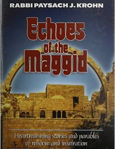 Echoes of the Maggid: Heartwarming Stories and Parables of Wisdom and Inspiration